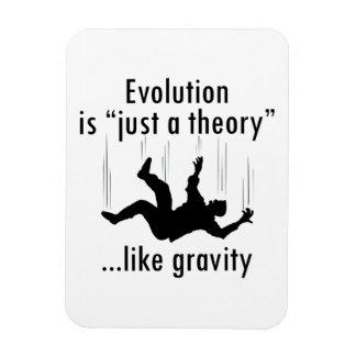 De evolutie is enkel een theoriemagneet magneet