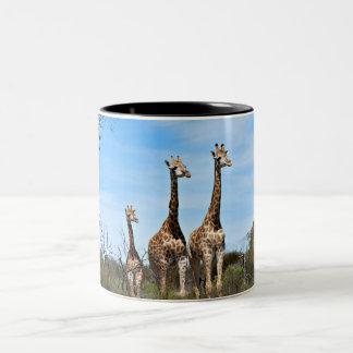 De Familie van de giraf Tweekleurige Koffiemok