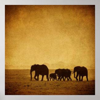 De Familie van de olifant Poster