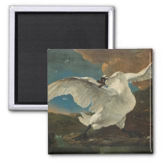 De fijne kunst Asselijn van de zwaan Vierkante Magneet