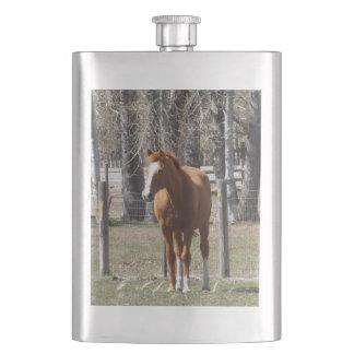 De Fles van het Paard van de kastanje Flacon