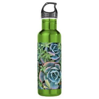 De flessen mooie cactussen van het water die in