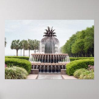 De Fontein van de Ananas van Charleston, de Poster