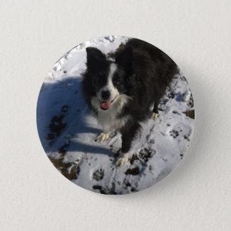 De foto van border collie op producten ronde button 5,7 cm