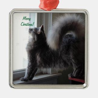 De Foto van de Kat van de Wasbeer van Maine Zilverkleurig Vierkant Ornament