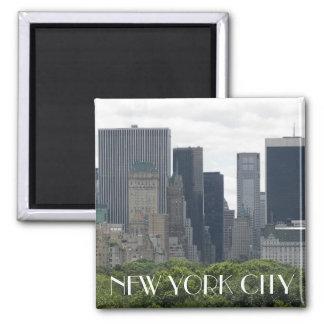 De Foto van de Reis van de Stad van New York Magneet
