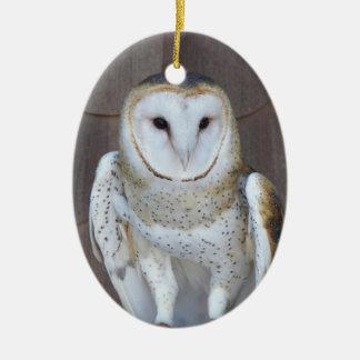 De Foto van de Uil van de schuur Keramisch Ovaal Ornament
