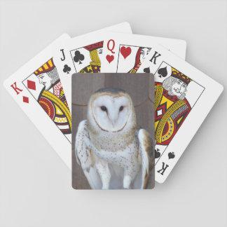 De Foto van de Uil van de schuur Speelkaarten
