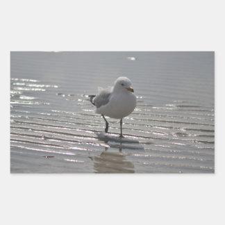 De foto van de zeemeeuw rechthoekige sticker