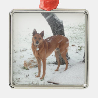 De Foto van het Huisdier of van de Familie van het Zilverkleurig Vierkant Ornament