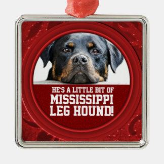 De Foto van het Huisdier van de Hond van het Been Zilverkleurig Vierkant Ornament