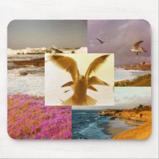 De fotocollage van de Stranden van La Jolla CA mou Muismat
