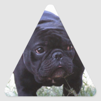 De Franse hond van de Buldog Driehoek Sticker