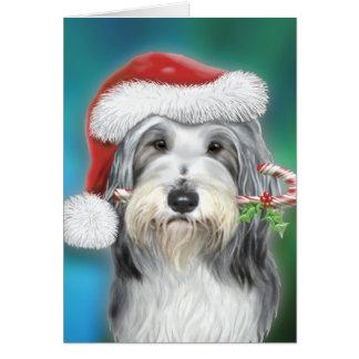 De gebaarde Kerstman BG van de Collie Briefkaarten 0