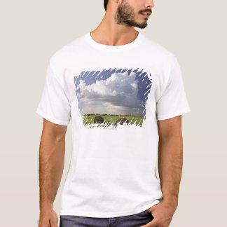 De gebieden van de oogst met onweerswolken, t shirt