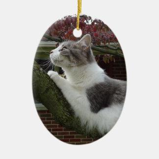 De Gedachten van de kat Keramisch Ovaal Ornament