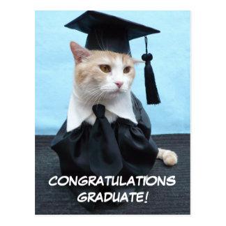 De Gediplomeerde van gelukwensen! Briefkaart