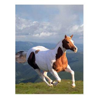 De Geest van het wild paard Briefkaart