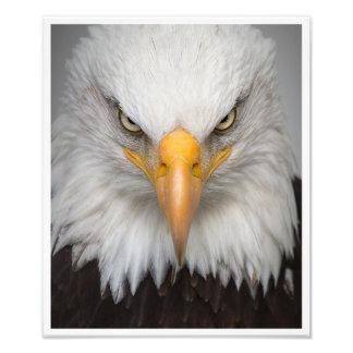 De geest van vrijheid foto afdrukken
