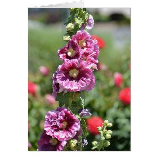 De geïnspireerde Bloemen van de Stokroos Kaart