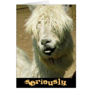 De gekke Kaart van de Verjaardag van de Lama