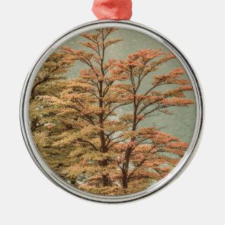De Gekleurde Bomen van het landschap Scène bij het Zilverkleurig Rond Ornament