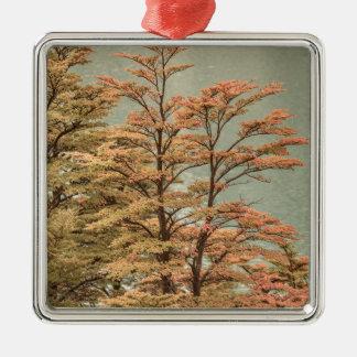 De Gekleurde Bomen van het landschap Scène bij het Zilverkleurig Vierkant Ornament