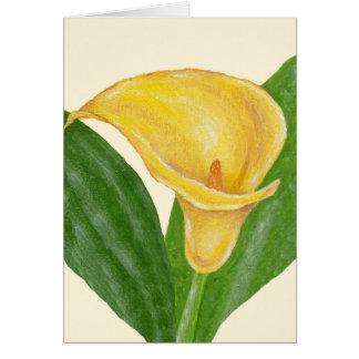 De gele Calla kaart van de Lelie