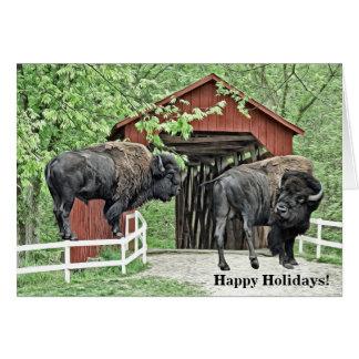 De gelukkige Bizon van de Stier van het Vakantie Briefkaarten 0
