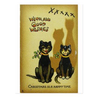 De gelukkige Briefkaarten van de Katten van