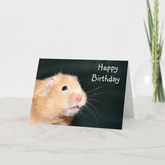 De Gelukkige Hamster Van De Verjaardag Kaart Zazzle Nl