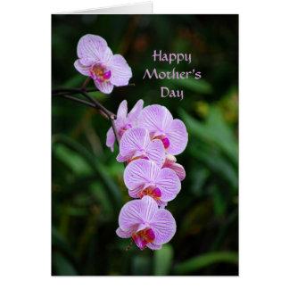 De gelukkige Kaart van de Orchidee Phalaenopsis