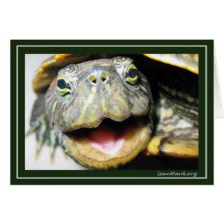 De gelukkige Kaart van de Schildpad