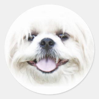 De gelukkige sticker van het hondgezicht