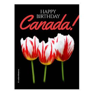 De gelukkige Tulpen van het Blad van de Esdoorn Briefkaart