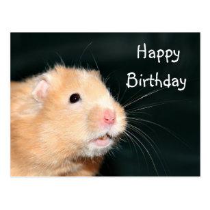 De Gelukkige Hamster Van De Verjaardag Cadeaus Zazzle Nl