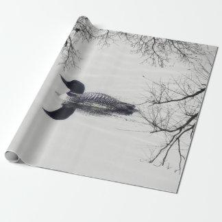 De gemeenschappelijke Duiker zwemt in een Cadeaupapier