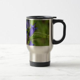 De gentiaan van de wilg (Gentiana asclepiadea) Reisbeker