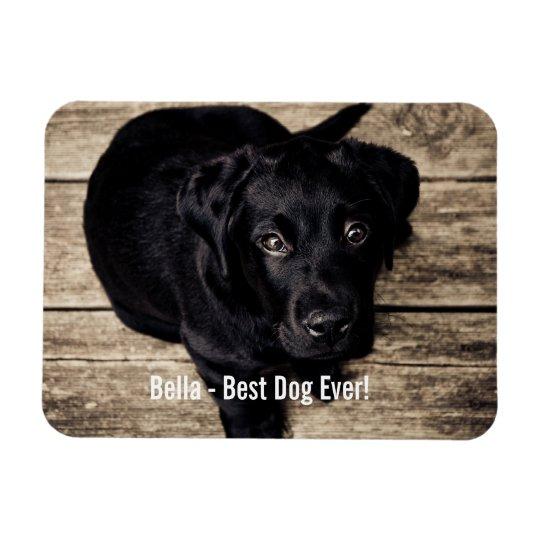 De gepersonaliseerde Zwarte Foto van de Hond van Magneet
