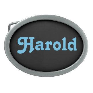 De Gesp Harold van de riem