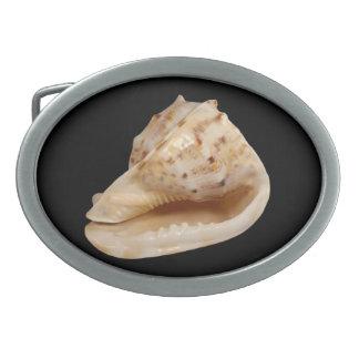 De Gesp van de Riem van Shell van de kroonslak