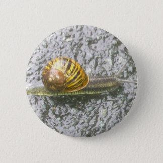De gestreepte Knoop van de Slak Ronde Button 5,7 Cm