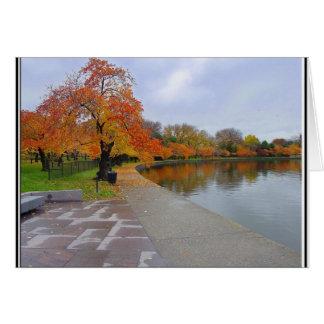 De getijde Kleuren van de Herfst van de Pool Briefkaarten 0