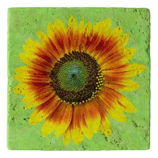 De Gewaagde Bloemen Gele en Groene Bloem van de Trivet