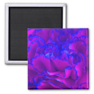 De gewaagde Roze en Blauwe Bloem van de Anjer Magneet