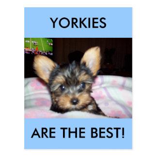 De Giften van het Hondenliefhebber van het Puppy Briefkaart