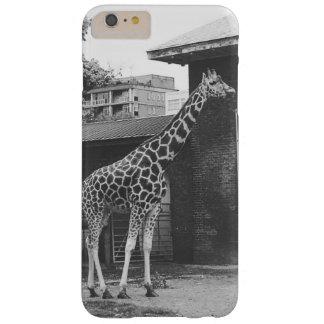 De giraf in de telefoonhoesje van Londen Barely There iPhone 6 Plus Hoesje