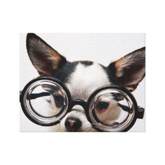 De glazen van Chihuahua - hondoogglazen Canvas Afdrukken