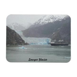 De Gletsjer van de Zager van de Magneet van de koe