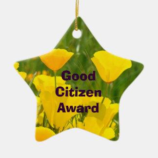 De goede Toekenning van de Burger! de School van Keramisch Ster Ornament